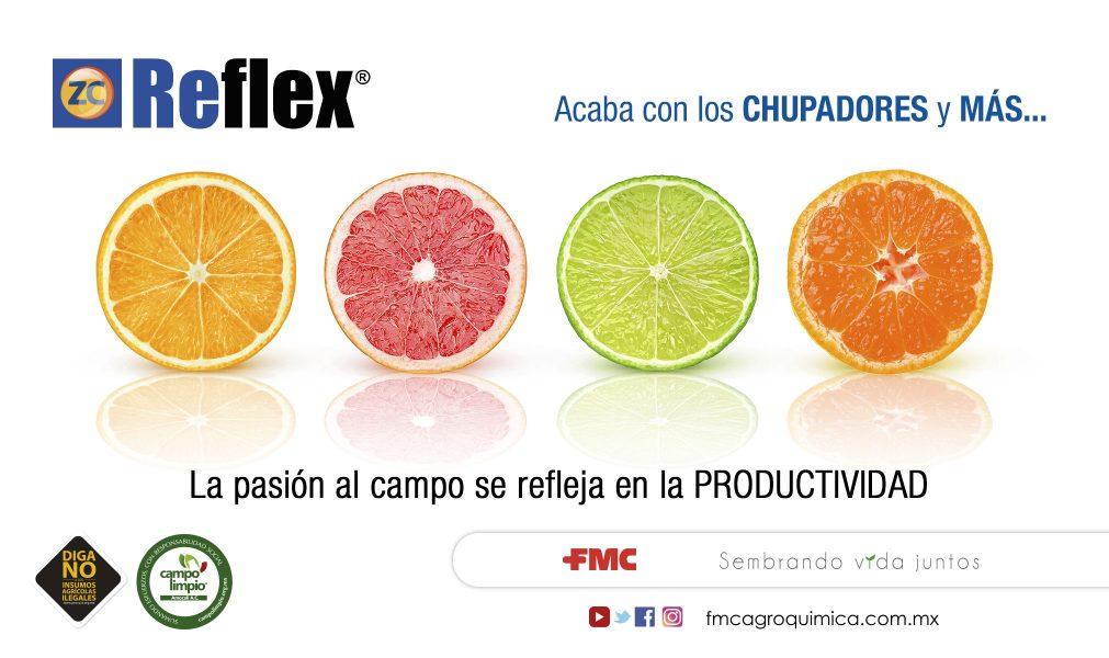 04-REFLEX-CITRICOS--1011x600