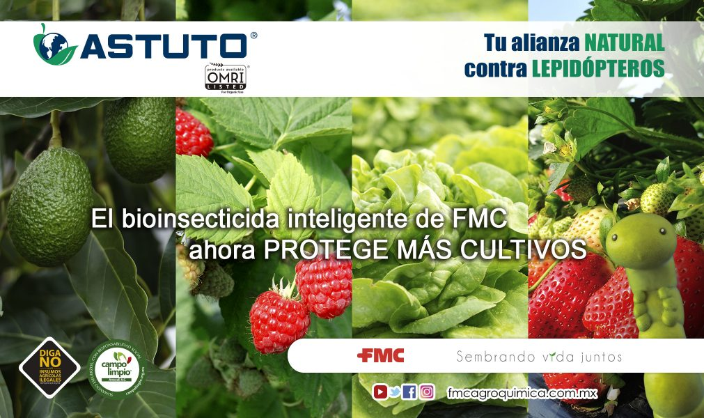 05-ASTUTO-AMPLIACION-ETIQUETA-1011x600